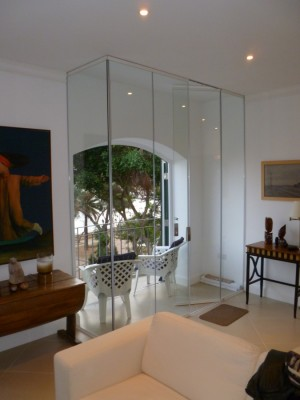 Internal Frameless Glass Doors